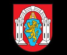 Grad Vukovar partner